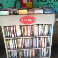 30 chilometri di libri. Le migliori librerie di New York.